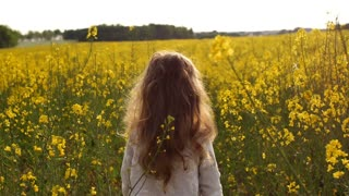 Little girl standing on a flower field at sunset