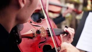 musical ensemble. musician playing the violin