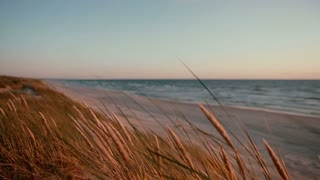 Sandy beach with words and a heart written on it and dunes covered with grass on a beautiful evening at the sea