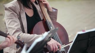 string ensemble. girl playing the cello