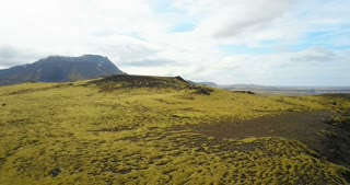 Aerial view of the beautiful landscape, the green lava field in Iceland. Drone flying over the cliffs covered with moss.
