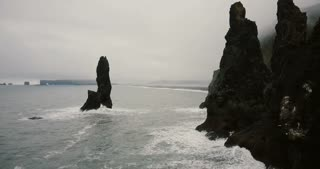 Aerial view of the black volcanic beach and troll toes rocks on the sea in Iceland. Seagull flying close near the copter