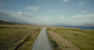 Aerial view of the ocean and mountains valley. Cars riding on the countryside road in picturesque place.