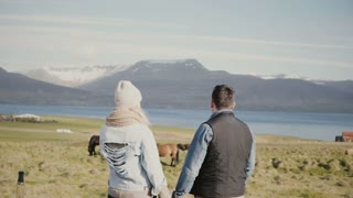 Back view of young tourists couple standing on the Iceland ranch and looking on the famous national horses.