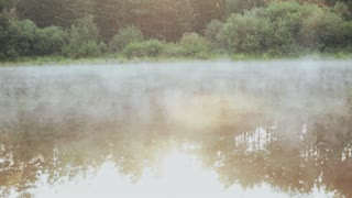 Beautiful nature landscape in the forest. The fog, white smoke over the water, calm lake.