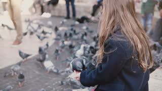 Birds try to eat from little girl's hands. Slow motion. Child feeding two pigeons on her arms, flock in the background.
