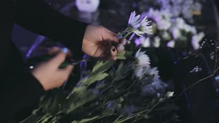 Close-up view of female hands cutting the flowers from branch with secateurs. Florist making bouquet from blooms.