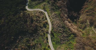 Drone flies above narrow mountain road. Aerial top view of forest driveway opening to passing car and buildings. 4K.
