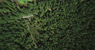 Drone flying over picturesque pastoral scenery. Aerial 4K vertical shot of peaceful forest trees, river and meadows.