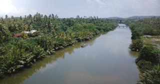 Drone turning left above small white boat on beautiful river flowing in jungle wilderness and tropical green palm trees.