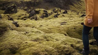 Freedom: two tourists woman raises hands on the lava field covered moss in Iceland. Friends feeling happy after hiking.