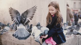 Several pigeons eat from little girl's hands. Slow motion. Happy female kid feeding city birds on her arms. Kindness.