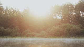 The fog floats over the water, lake. Beautiful morning landscape at the forest. Sun rays are shining.