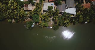Top view drone flying backwards above beautiful tropical coast resort houses with lush green palm trees on a river bank.