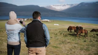 Young couple visiting the farm to choosing animal. Woman taking pictures of beautiful Icelandic horses on a field.