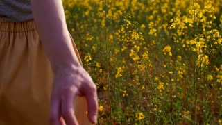 Woman's hand touching flowers closeup. dolly shot