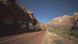 Roadside Scene in Zion National Park