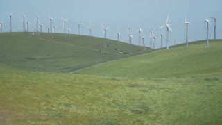Wind blows the grass near a Californian wind farm