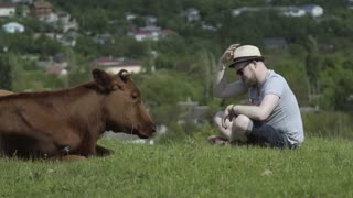 4k Young man sitting on the green grass and puts a hat on cow head