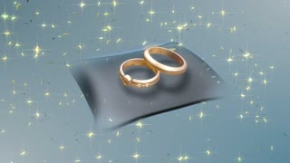 A Pair of Gold Wedding Ring