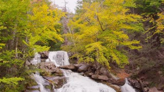 Pan down Vibrant fall foliage waterfall autumn