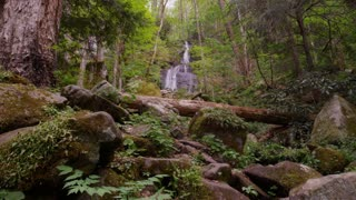 Waterfall in lush woods of Great Smoky Mountains National Park forest static wide