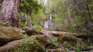 Waterfall in lush woods of Great Smoky Mountains National Park forest slider left