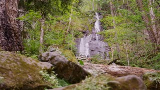Waterfall in lush woods of Great Smoky Mountains National Park forest slider right