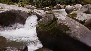 Flowing creek waterfall in Great Smoky Mountains National Forest dolly slider left