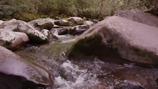 Flowing creek in Great Smoky Mountains National Forest dolly slider left