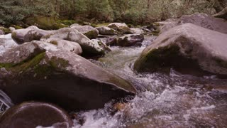 Flowing creek in Great Smoky Mountains National Forest dolly slider right