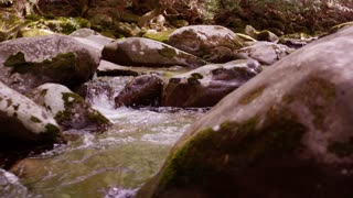 Stream in Great Smoky Mountains National Forest dolly slide left