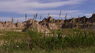 Grass blowing in Badlands National Park