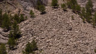Tilt up onto close shot of Mount Rushmore