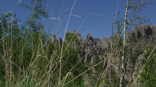Wide slider shot of The Needles in Custer State Park South Dakota