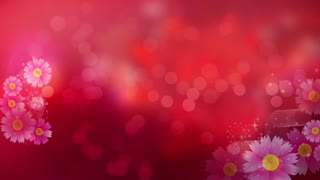 Abstract Flower Bokeh Valentines Day