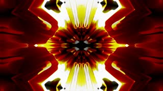Abstract Rorschach Ink blot test in a Kaleidoscope