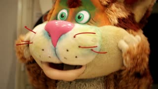 Actor in a cat's costume. Closeup.