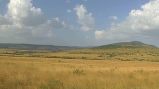 AERIAL: Amazing Kenyan safari, Maasai Mara