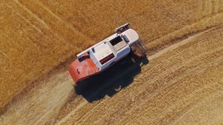 AERIAL CLOSEUP: Flying above combine harvesting golden wheat field