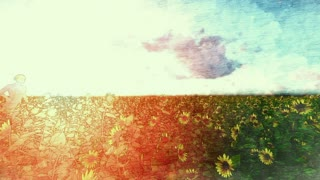Painting of a woman running through a sun flower field at sunset, hd video
