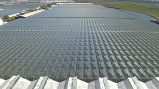AERIAL: Modern horticultural farming glasshouses growing fresh vegetables