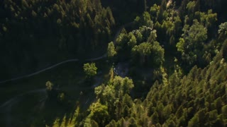 Aerial Shot Of Forested Canyon And Dam