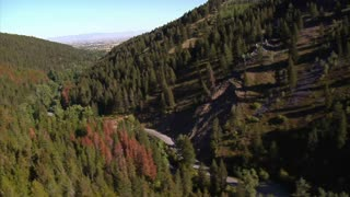 Aerial Shot Of Forested Canyon With Highway