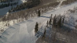 Aerial Shot Of Skier And Snowboarder With Forest