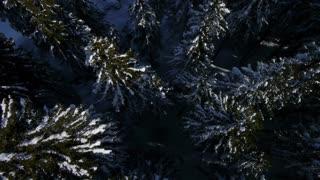 AERIAL: Snow halfpipe