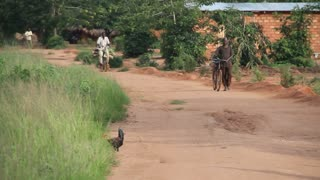African Men With Bikes On Dirt Road