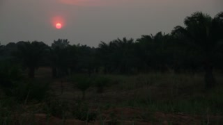 African Sunset With Fiery Pink Orb
