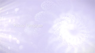 After Effects CS4 Template: Floral Photo Template