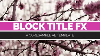 After Effects CS5 Template: Block Titles